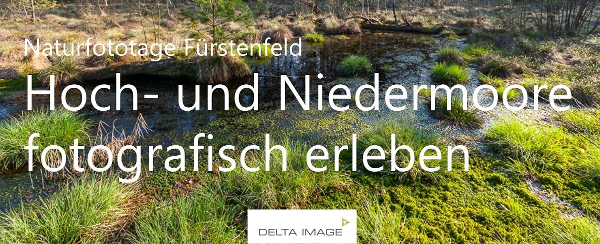 Banner Naturfototage Haspelmoor
