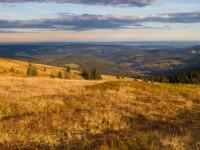 Hochschwarzwald am Feldberg – Herbstwald in 1493 m üNN Höhe